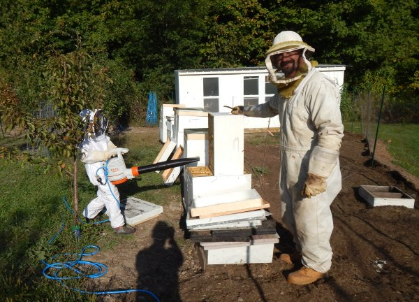 Solar Powered Bee Blower